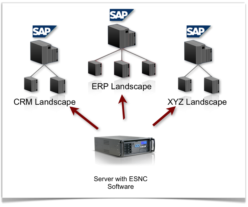 Securing SAP Systems - ESNC Software
