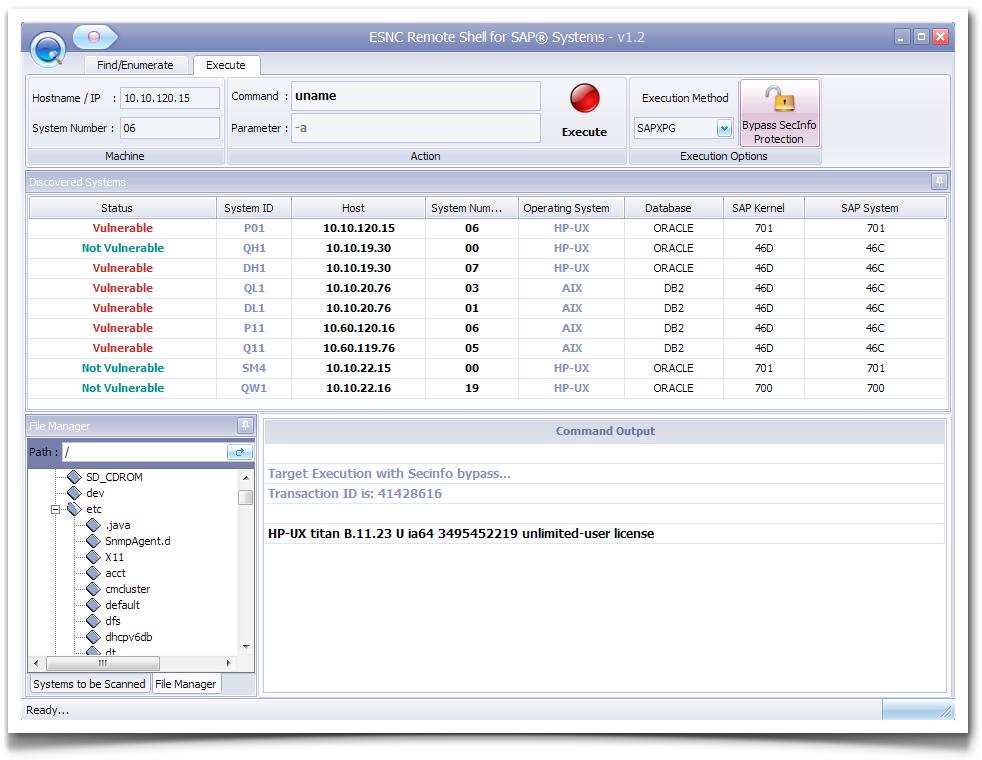 SAP Remote Exploit - Proof of Concept